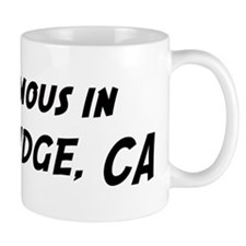 Famous in Northridge Mug
