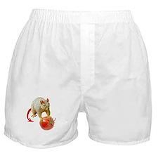 Devil Squirrel Stealing Tomato Boxer Shorts