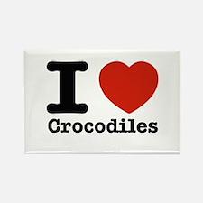 I Love Crocodiles Rectangle Magnet