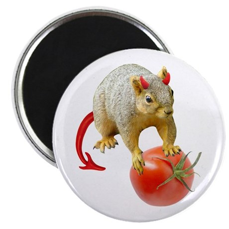 "Devil Squirrel Stealing Tomato 2.25"" Magnet (10 pa"