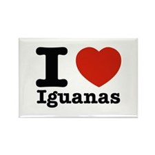 I Love Iguanas Rectangle Magnet