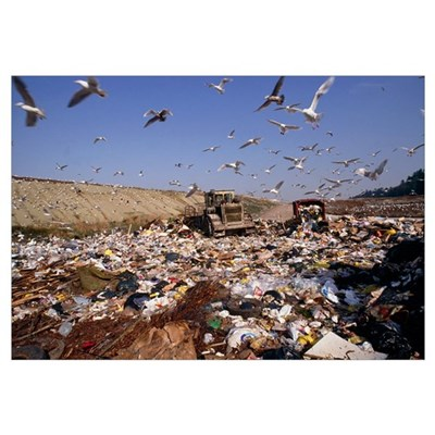 View of a waste landfill site Poster