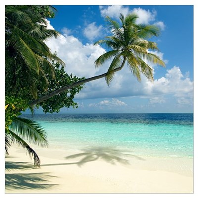 Tropical beach Canvas Art