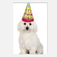 Bichon Frise Birthday Postcards (Package of 8)