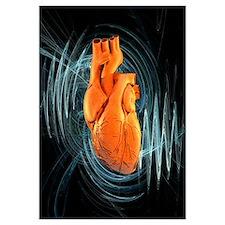 Heartbeat, conceptual artwork