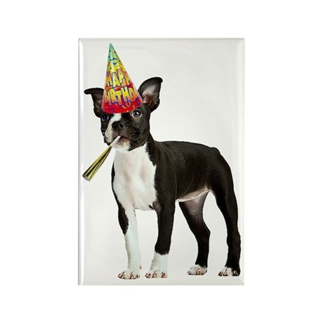 Boston Terrier Birthday Rectangle Magnet