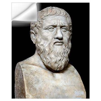 Plato Wall Decal