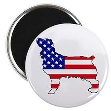 USA Boykin Spaniel Magnet