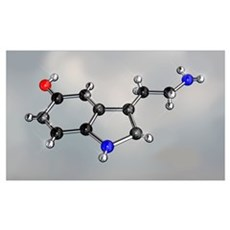 Serotonin molecule, artwork Poster