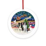 Xmas Magic-2 Border Collies (BBr) Ornament (Round)