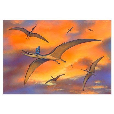 Pterosaur flying reptiles, artwork Canvas Art