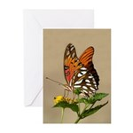 Butterfly Greeting Cards (Pk of 20)