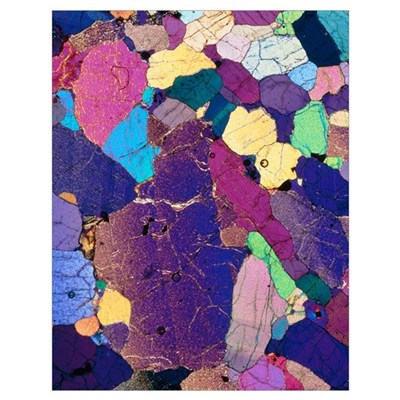 Polarised LM of a thin section of monzonite rock Poster
