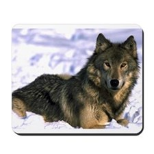 Alpha Wolf Mousepad