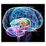 Brain Wall Art