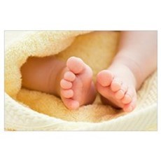 Baby's feet Poster