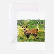 deer in a beautiful setting Greeting Cards (Pk of