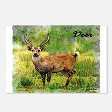 deer in a beautiful setting Postcards (Package of