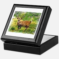 deer in a beautiful setting Keepsake Box