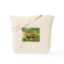 deer in a beautiful setting Tote Bag