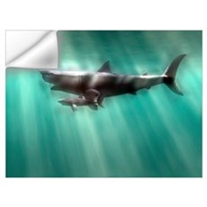 Megalodon shark and great white Wall Decal
