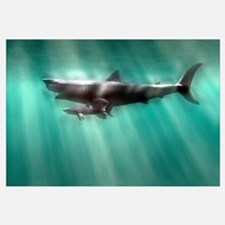 Megalodon shark and great white