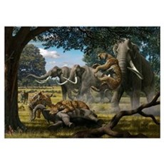 Mammoths and sabre-tooth cats, artwork Poster
