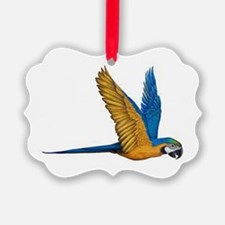 Flying Macaw Parrot Bird Ornament