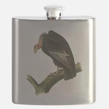 California Condor Flask