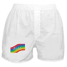 Unique Queer Boxer Shorts