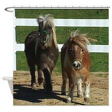 Cute Miniature Horses Shower Curtain