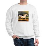 MARENGO Sweatshirt