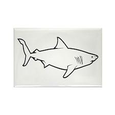 Great White Shark Rectangle Magnet
