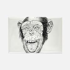 Chimp Rectangle Magnet