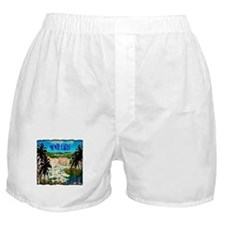 monte carlow monaco illustration Boxer Shorts