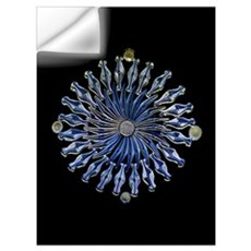 Diatoms, light micrograph Wall Decal