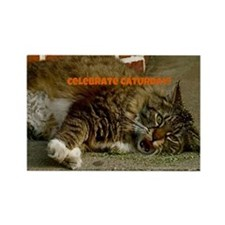 Celebrate Caturday! Rectangle Magnet