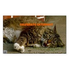 Celebrate Caturday! Decal