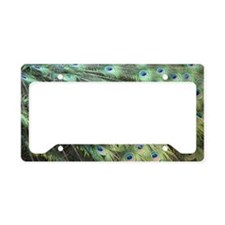 Helaine's Peacock Feathers License Plate Holder