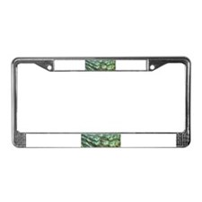 Helaine's Peacock Feathers License Plate Frame