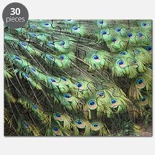Helaine's Peacock Feathers Puzzle
