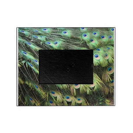 Helaine's Peacock Feathers Picture Frame