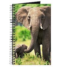 Mother Love Journal
