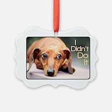 didntdoit.png Ornament