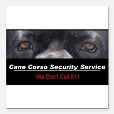 "security.png Square Car Magnet 3"" x 3"""