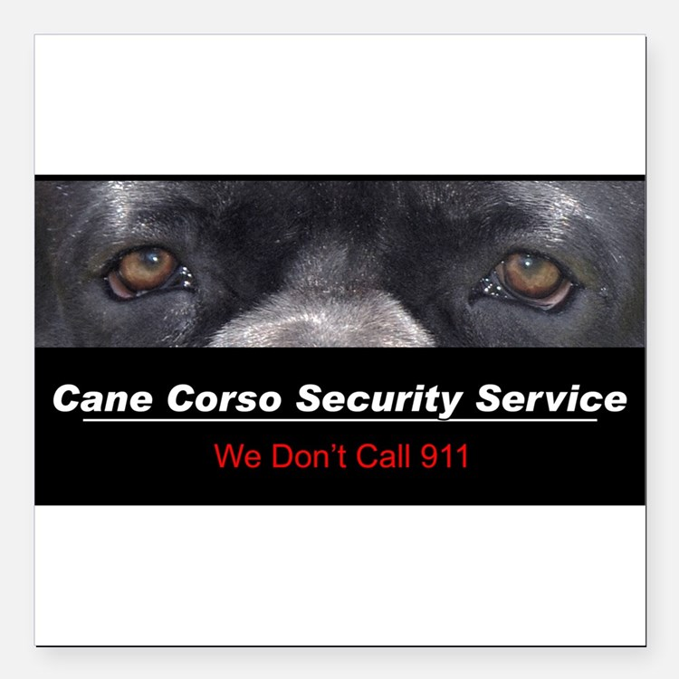 """security.png Square Car Magnet 3"""" x 3"""""""