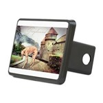 castle.png Rectangular Hitch Cover
