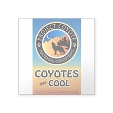 """Coyotes are Cool"" Square Sticker Decal"