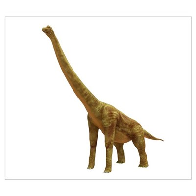Brachiosaurus dinosaur Canvas Art