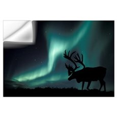Aurora borealis and caribou Wall Decal